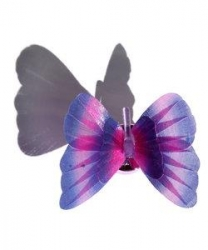 PURPLE BUTTERFLY MAGIC - Night Light - Click for more info